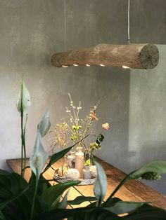 Boomstam hanglamp met dimbare led verlichting Retro Images, Cool Lamps, Ideas Para, My House, Lights, Interior Design, Cool Stuff, Plants, How To Make