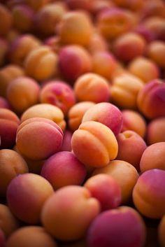 Lovely apricots :-)FollowFruit Power! - Fruit power!