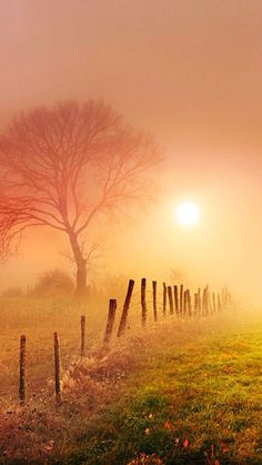 Sunrise, morning mist