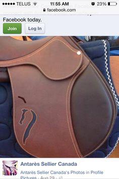 Antares custom saddle with antares logo cutout want sooo bad!!