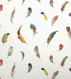 Feathers | Birds Gallery Fabric by Zimmer + Rohde | Jane Clayton