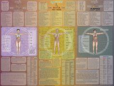 ayurveda ayurvedic, poster yoga, Vata, Pitta, aaron staengl