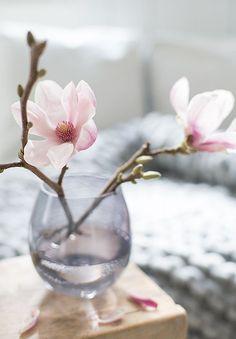 6 Creative Tips AND Tricks: Antique Vases Irises big vases modern.Big Vases Modern old vases nail polish. Blue And Blush Wedding, Blush Wedding Colors, Big Vases, Tall Vases, White Vases, Ikebana, New Shape, Farmhouse Vases, Vase Transparent