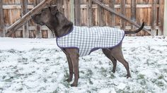 DIY Dog Coat Video Tutorial including drafting the pattern