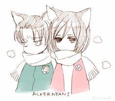 Rivamika>>> Mikasa and Levi nekos Levi Ackerman, Levi Mikasa, Rivamika, Anime, Attack On Titan, Memes, Otaku, Book Art, Comics