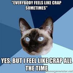 Seriously.  Please believe me.  Feeling like crap & hurting all the time is my new normal.  That's really depressing and I'll never get used to it.  -K10