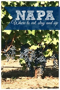 The best places to eat, sleep and sip in #napa