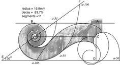 The #Geometry MATH of a violin body, Pin 2. Geometric reconstruction of Stradivari's sketch of a violin scroll. See also full body design in Pin https://www.pinterest.com/pin/384987468125924618/ - Photo pinned via Cnaea Eenoe. RESEARCH - https://www.pinterest.com/DianaDeeOsborne/logic-math-music/ - LOGIC, MATH & MUSIC. Same geometric technique used to construct the golden section ratio. Relationships of the major musical intervals, 1/2, 2/3, 3/4, 3/5, 4/5, 4/9 are also used.