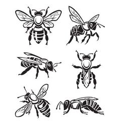 Illustration about Monochrome design of six bees. Illustration of shape, comb, silhouette - 45534962 Bee Stencil, Stencil Art, Stencils, Honey Logo, Bee Pictures, Logos Retro, Bee Boxes, Wood Burning Art, Bee Art