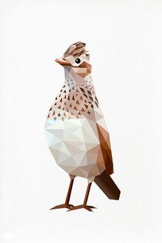 Skylark Geometric illustration by tinykiwiprints