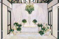 All white pelamin with fresh eucalyptus leaves. #wedding #velvetdrapes #garden