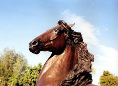 close up head of spirit bronze statue rancho mirage Morgan Horse, Rancho Mirage, Horse Sculpture, Equestrian, Giraffe, Fountain, Horses, Fine Art, Statue