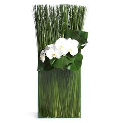 vision glass vase filled with a hedge of steel grass, textured leaves and an orchid accent