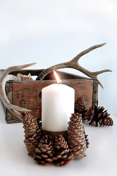 I love pine cones... love the natural look, the different colors of the brown/grey and the wooden texture. They are so decorative and mix so well with shiny cream white christmas tree balls.