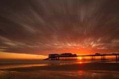Autumn Gold - North Norfolk coast - Australia