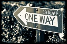 "Sunday Snippet: Knowledge and Wisdom - ""Knowledge is knowing it's a one way street. Wisdom is looking both ways anyway."""