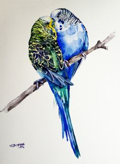 Your place to buy and sell all things handmade Lovebird Tattoo, Budgies, Parrots, Watercolor Paintings, Watercolour, Paper Artist, Art Plastique, Love Birds, Bird Art