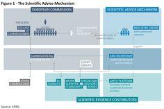 The Scientific Advice Mechanism Bar Chart, Advice, Tips, Bar Graphs