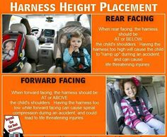 Harness placement in