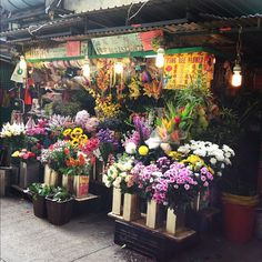 hong kong flower markets