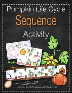 Worked like a charm!!  Pumpkin Life Cycle Sequence