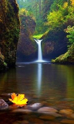 The World's Top 50 Wonders of Nature - Travel MSA - Waterfall Beautiful World, Beautiful Places, Beautiful Pictures, Beautiful Nature Wallpaper, Beautiful Landscapes, Beautiful Paintings Of Nature, Landscape Photography, Nature Photography, Photography Jobs