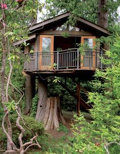 The aptly named Secret Garden Treehouse in Seattle was commissioned by a young music industry star who wanted a quiet retreat.