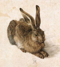 Young Hare by Albrecht Durer is a 1502 watercolour by German artist Albrecht Dürer. It is acknowledged as a masterpiece of observational art. The subject is rendered with almost photographic accuracy, and sufficiently detailed for the hare to be identified as a mature specimen. Read more remarkable information about this painting by clicking on the image.