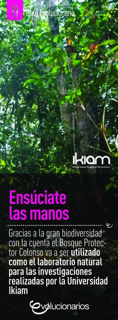 El Bosque Protector Colonso tendrá una superficie aproximada de 80.000 hectáreas, esto le brinda a la Universidad Ikiam una gran ventaja, ya que los estudiantes tendrán que caminar cerca de 300 metros para tomar las muestras necesarias para desarrollar sus proyectos.