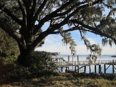 Daufuskie Island, SC -- This is an amazing little island that loads of history. Ferry is a good way to get there as there is no bridge from the mainland, but is well worth it. -- 12 Most Underrated Places In SC That You Must Check Out! #Family #Travel  #LowcountryWeekendGetawayIdeas #ShermanFinancialGroup