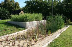 un jardin oui et non un filtre plant d 39 assainissement des eaux us es une innovation. Black Bedroom Furniture Sets. Home Design Ideas
