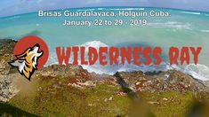 January 22 to 29 - 2019 Holguin, January 22, Most Beautiful Beaches, Beach Resorts, Cuba, Wilderness, Travel, Viajes, Destinations