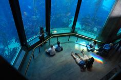 Ct has a fantastic aquarium @ Mystic Seaport...... hands on displays at the aquarium makes it so much more fun w/kids...