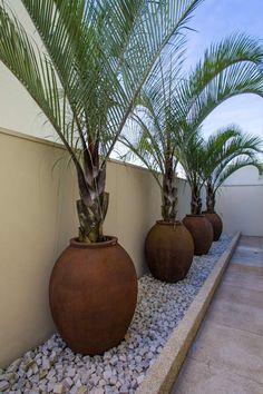 Paisagismo corporativo e comercial: Jardins tropicais por Le Jardin Arquitetura Paisagística