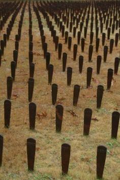Cedar Lane Cemetery, a massive memorial to the neglected insane