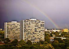 lafayette park - detroit - Mies Detroit Rock City, Ludwig Mies Van Der Rohe, Lafayette Park, International Style, Skyscraper, Michigan, Architecture, World, Towers