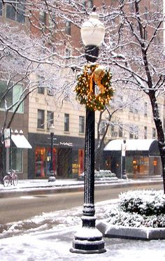 holiday shopping in Chicago. I would love to be somewhere like this for christmas!! I remember Store Windows as a little girl in Chicago at Christmas and riding the El into the loop.