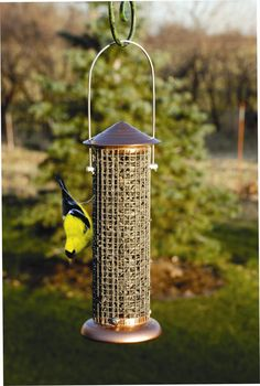 Brushed Copper Mini Sunflower Screen Feeder available at birdfeedersetc.com
