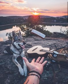 Patricia Cowley — A New Day a New Adventure Best Picture For Hiking Photography lake For Your Taste Animal Photography, Nature Photography, Hiking Photography, Animals And Pets, Cute Animals, Wallpaper Fofos, Hiking Dogs, Boy Dog, Photo Couple