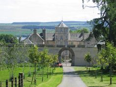 "From the back garden gate at Foulis Castle. After a great storm many trees were down. Clan members rallied and ""bought"" trees to replant. Which one is mine and the one in memorial for my father?"