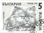 cats on postage stamps 02
