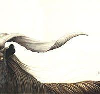 Nikki McIvor's Original Art -'Bulletproof Soul'-2013 Fox Home, Wild Honey, Grey Fox, Original Art, My Arts, Artist, Amen, Artists