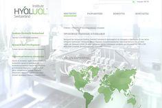 HYALUAL.com Advertising Web Design Web Development