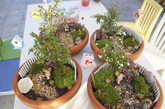 Fairy gardens - this mother went all out for her daughter's tenth b'day. Some really cute party ideas for little girls! Fairy gardens!