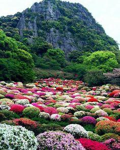 #Japanese Garden in #Mifuneyama, Saga, Japan 御船山