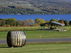 Glenora Winery on Seneca Lake in New York (Pomegranate Pizzaz is the best!)