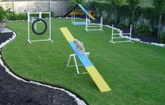 AGILITY Google Image Result for http://www.agilityrules.com/agility%2520equipment.jpg