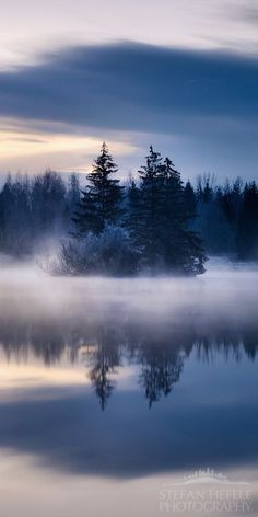 In the mist...:
