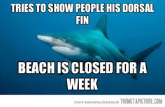 It's shark week everybody!!