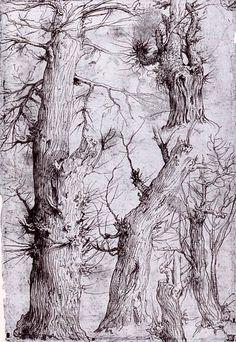 From drawing to painting 19 - Study of trees - Leg and feather - # - # 19 + # to <-> Landscape Sketch, Landscape Drawings, Landscape Art, Nature Sketch, Nature Drawing, Tree Drawings Pencil, Pen Drawings, Watercolor Trees, Watercolor Portraits